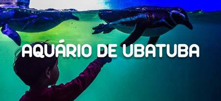 Acessar página do Aquário de Ubatuba