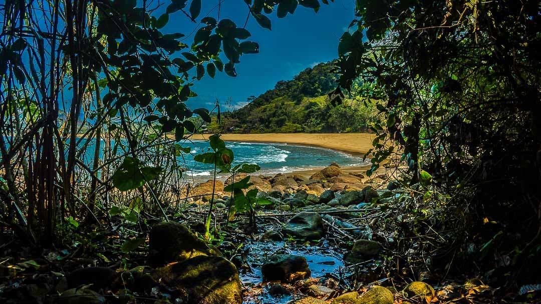 Entre a vegetação da costeira, as areias amarelo-alaranjadas da Praia Vermelha do Norte se revelam