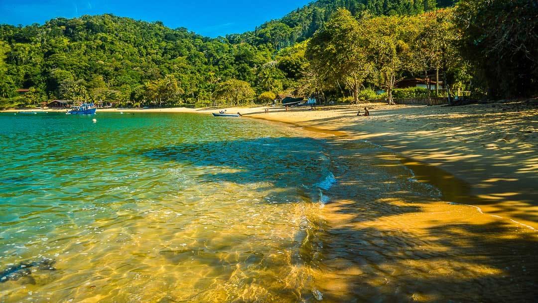Águas cristalinas e sombras, características da Praia do Flamengo, que é uma das melhores praias de Ubatuba para mergulho livre e destino de famílias