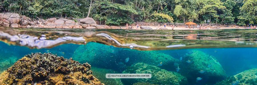 Efeito aquário, com as águas cristalinas da Ilha das Couves abaixo e a Praia de Fora acima do nível da água - Agende seu passeio de Picinguaba conosco