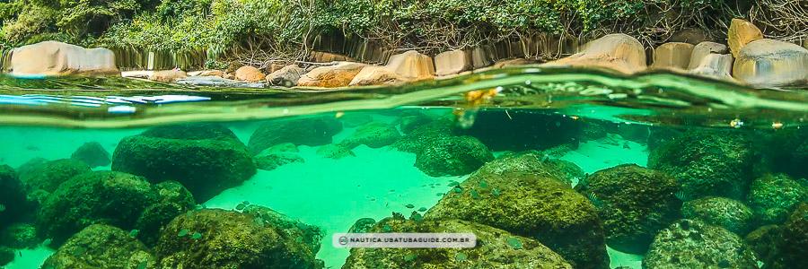 Efeito aquário, com águas translúcidas na parte inferior, e costeira e vegetação na parte superior da imagem