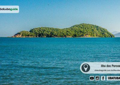 ilha-dos-porcos-pequena-ilha-almada-ubatuba-180418-016