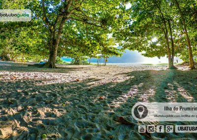 Sombras frondosas na área coberta da Ilha do Prumirim