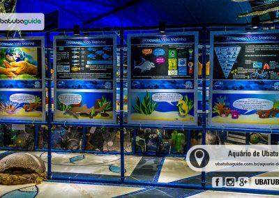 Exposição permanente sobre o Lixo no Mar no Aquário de Ubatuba