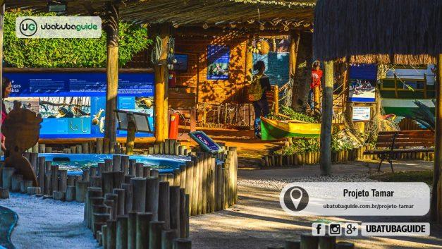 Início do Circuito do Projeto Tamar em Ubatuba, um dos atrativos e pontos turísticos para quem busca o que fazer em Ubatuba