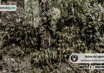 ruinas-da-lagoinha-ubatuba-160509-008
