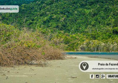 praia-da-fazenda-ubatuba-170425-052