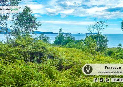 praia-do-leo-ubatuba-170125-039