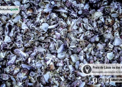 praia-do-lucio-ou-das-conchas-ubatuba-170526-081