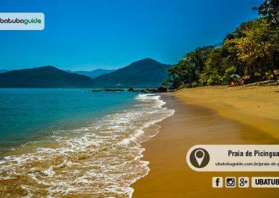 praia-de-picinguaba-ubatuba-170905-005