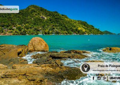 praia-de-picinguaba-ubatuba-170905-027