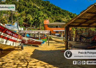praia-de-picinguaba-ubatuba-170905-124