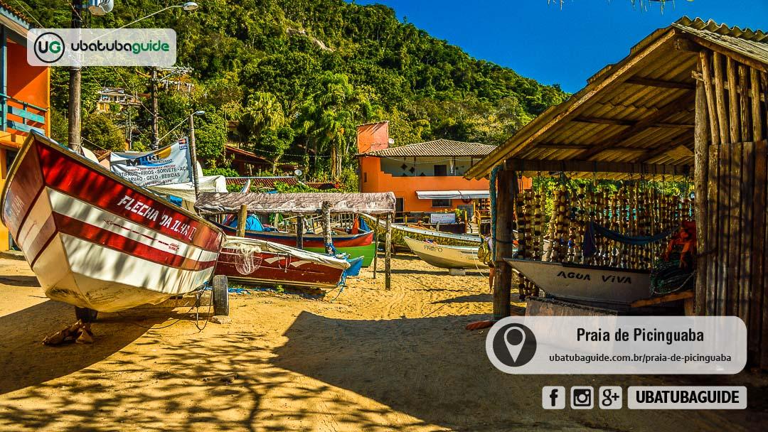 Embarcações no rancho de pescadores e pelas areias da Praia de Picinguaba, onde é possível contratar passeio de barco para a Ilha das Couves e outras da região