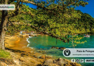 praia-de-picinguaba-ubatuba-170905-167