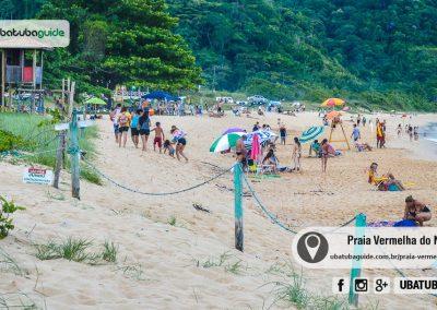praia-vermelha-do-norte-ubatuba-170114-180