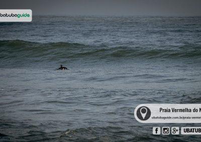 praia-vermelha-do-norte-ubatuba-170525-228
