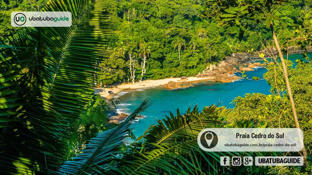 Entre densa vegetação, a Praia do Cedro do Sul revela-se estonteante na Trilha das Sete Praias