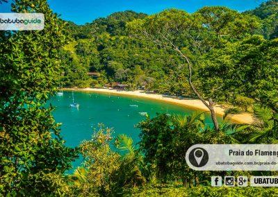 praia-do-flamengo-ubatuba-170830-003