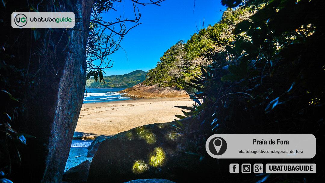 Ilha Anchieta ao fundo no horizonte com rochas e grandes sombras de árvores no primeiro plano no final da Trilha da Praia de Fora, cujo acesso é secundário a partir de um trecho da Trilha da Ponta da Espia